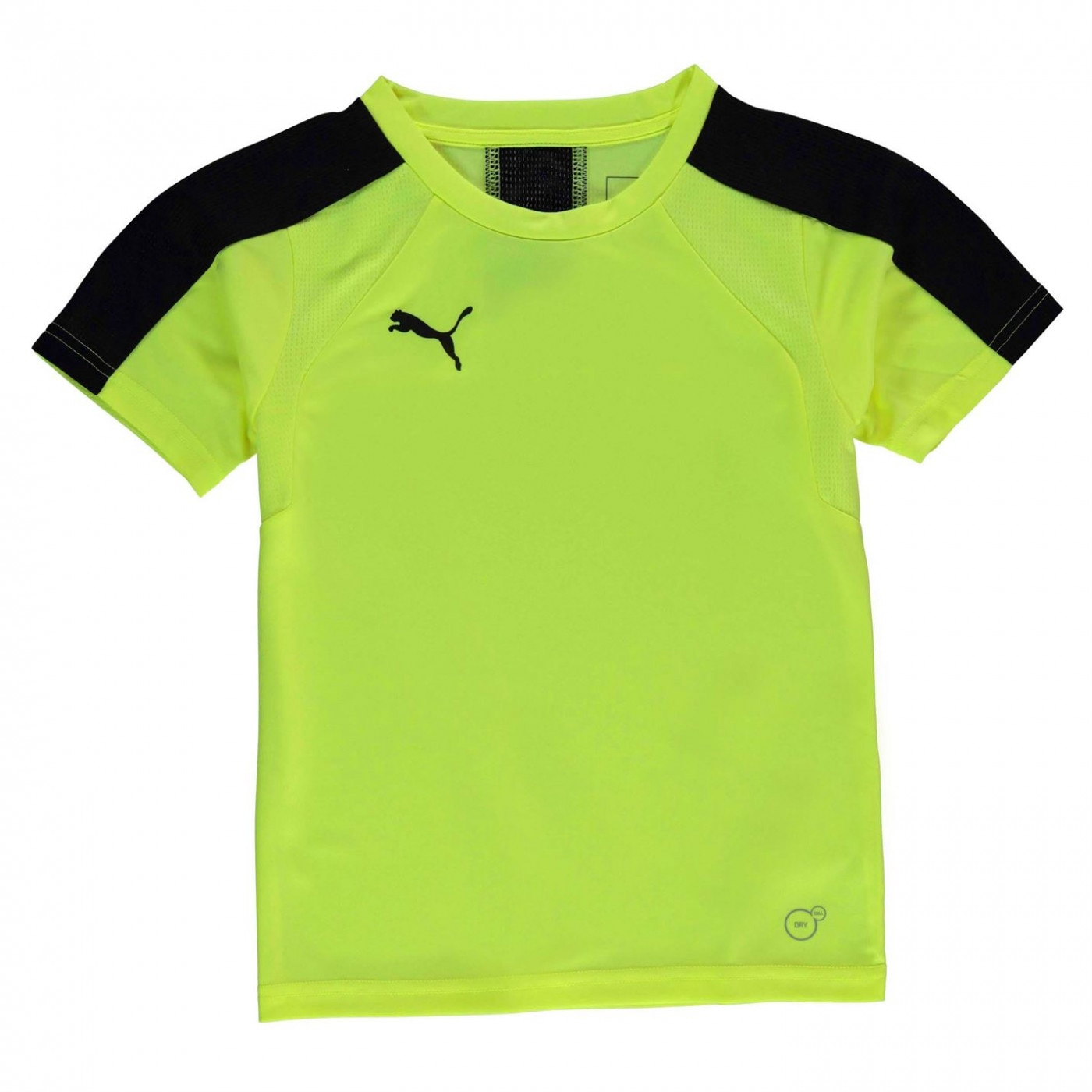 Puma Evo Training T Shirt Junior Boys