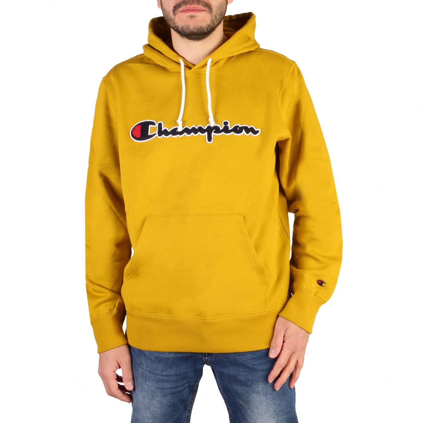 Men's hoodie Champion 21349