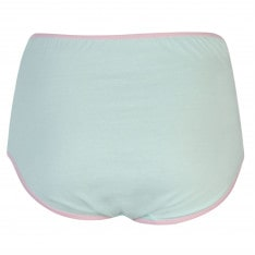 Miso 4 Pack Full Briefs Ladies