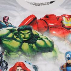 Character Short Sleeve T Shirt Boys