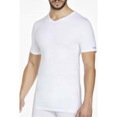 Mens t-shirt Pierre Cardin PCU101
