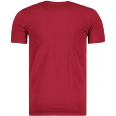 Mens t-shirt Stedman Basic