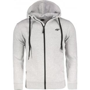 Men's hoodie 4F BLM300