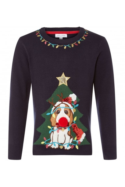 Rose and Wilde KW DOGGY XMAS JUMPER