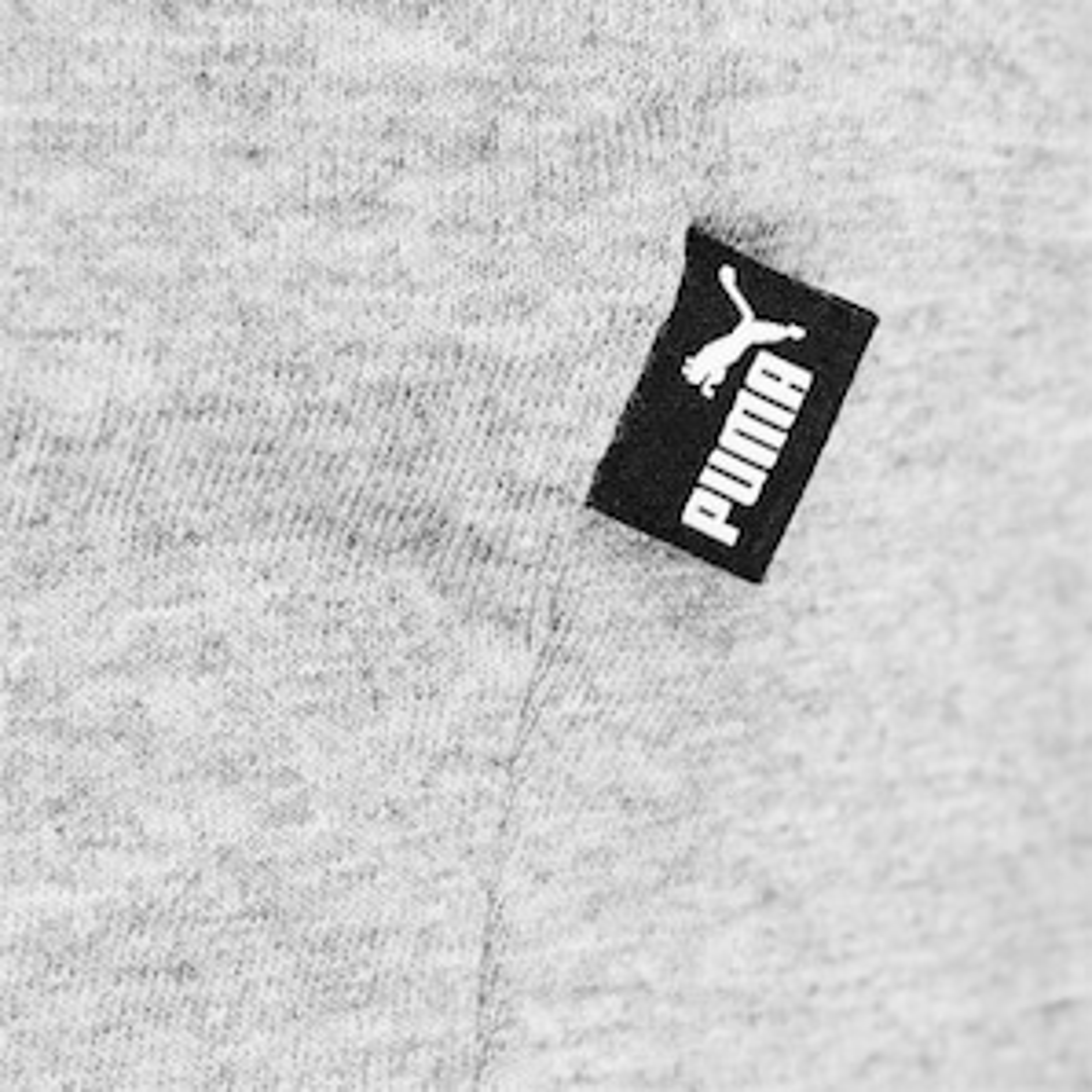 Pánske tričko Puma Big Logo QT