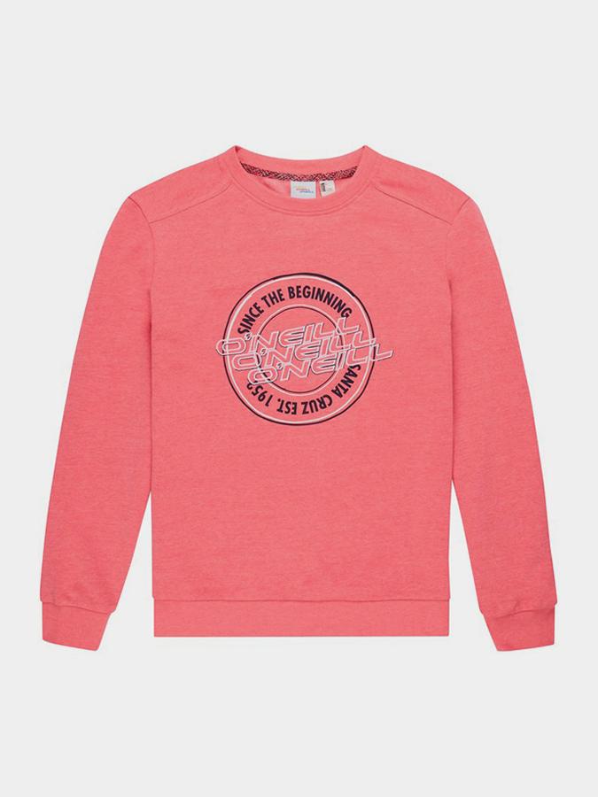 ONeill O ́Neill Lw Essentials Logo Crew Sweatshirt