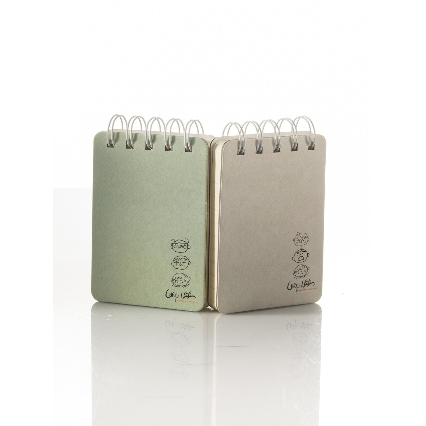 Set of 2 mini notebooks, green and gray